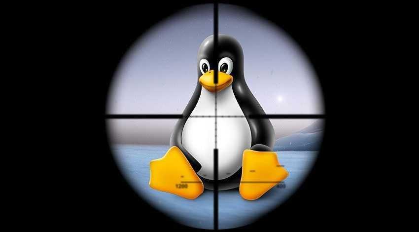 linux,Windows