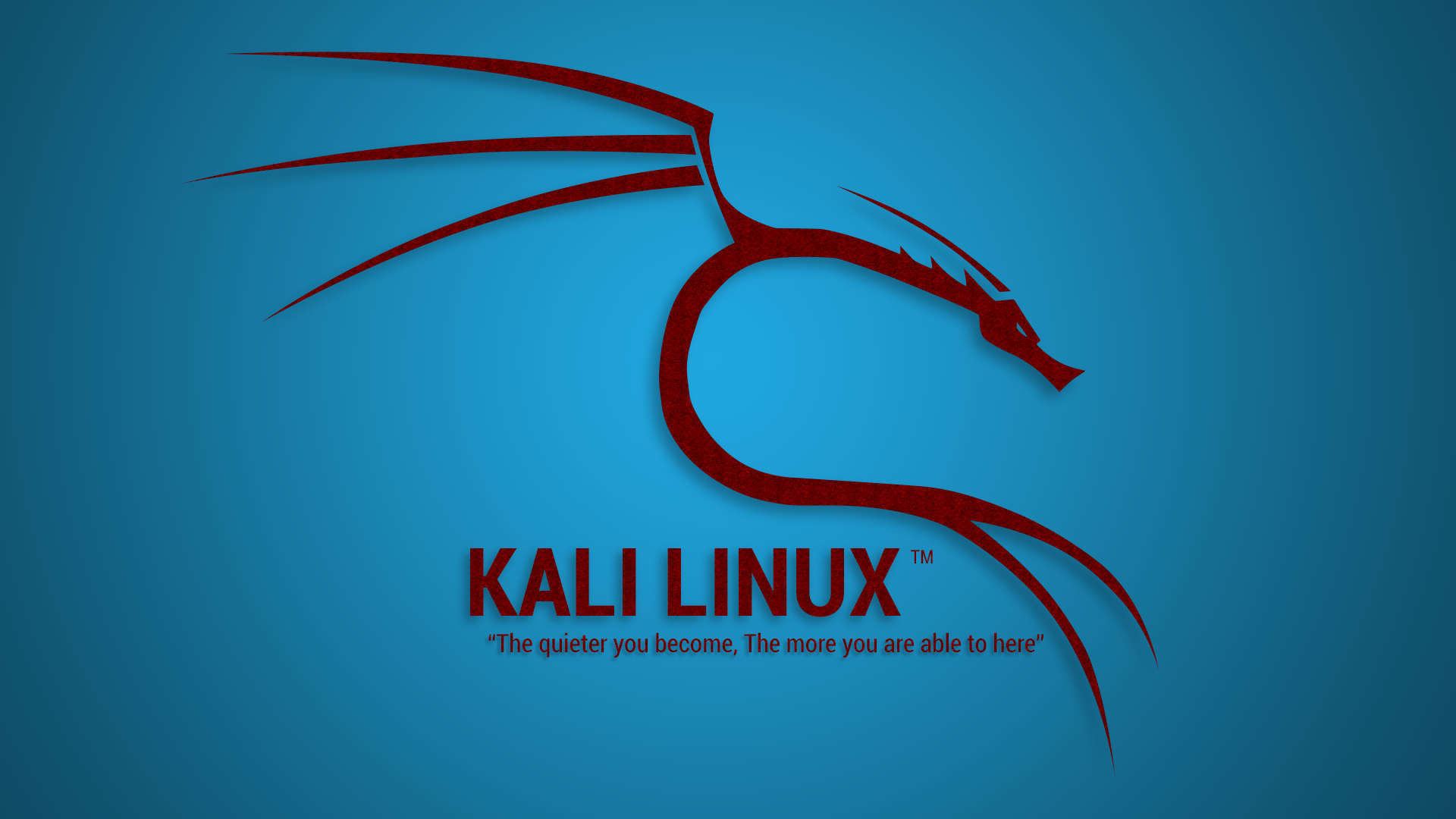 The 5 most popular Kali Linux programs