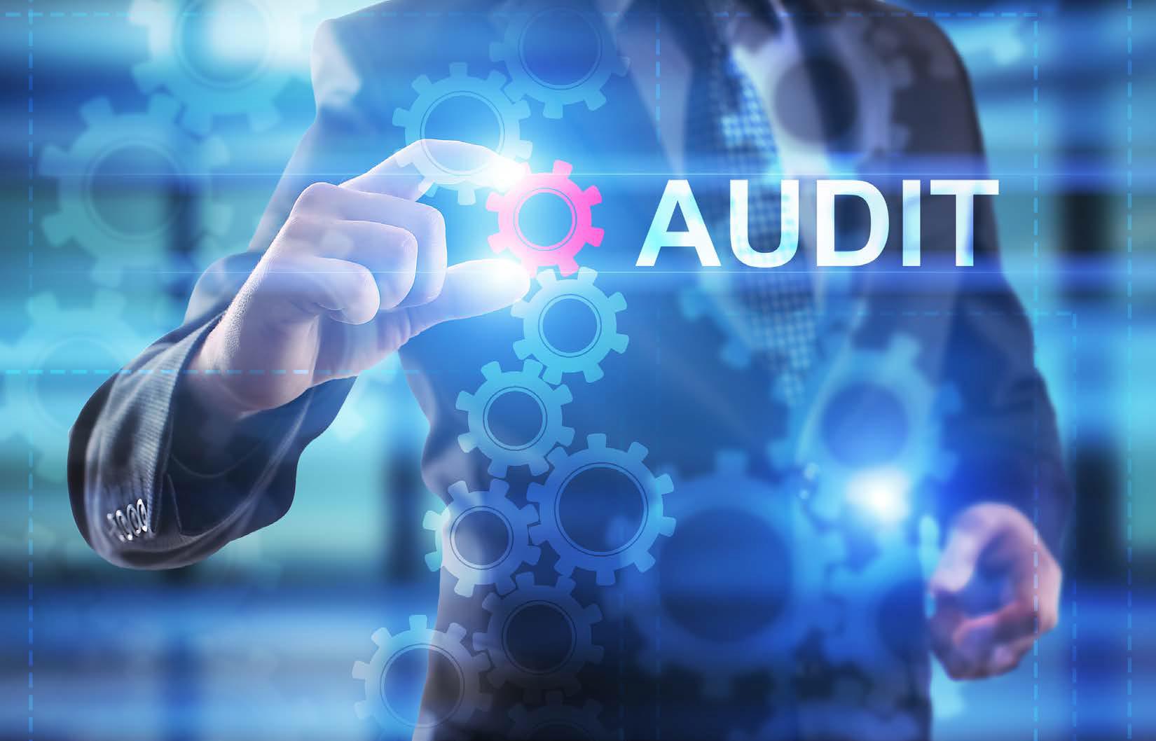 IT Audit business practices