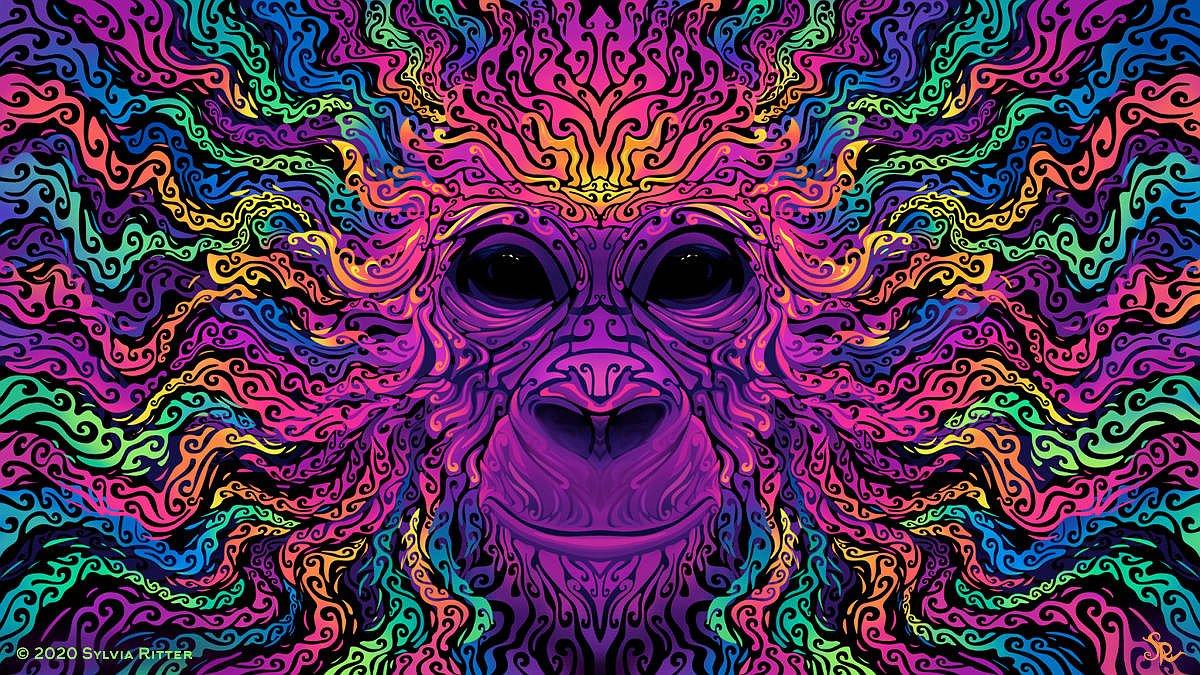 de2mhos 5617f7d9 9f35 4a3e a0a0 4098bcfd97f5 - Ubuntu 20.10 Groovy Gorilla beta