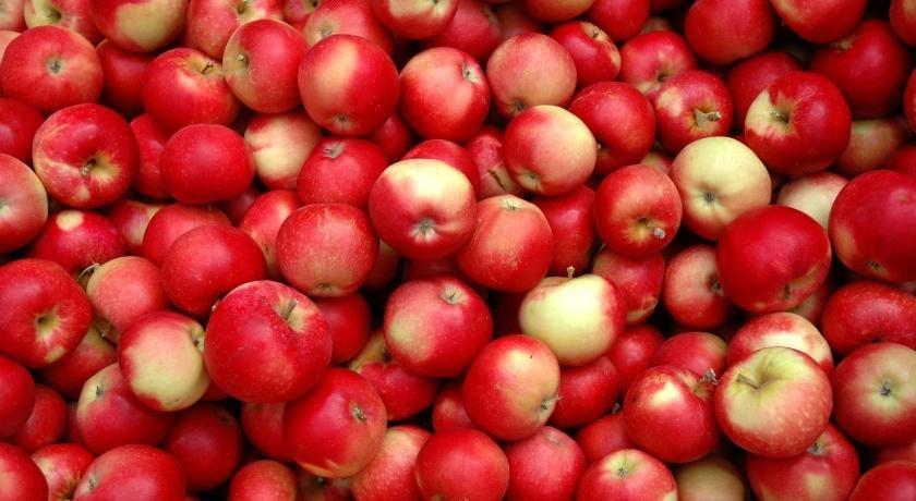 apples - iOS 14.4 update immediately (3 security vulnerabilities)