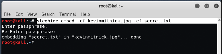 steg4 - The method of Sealing in Kali Linux