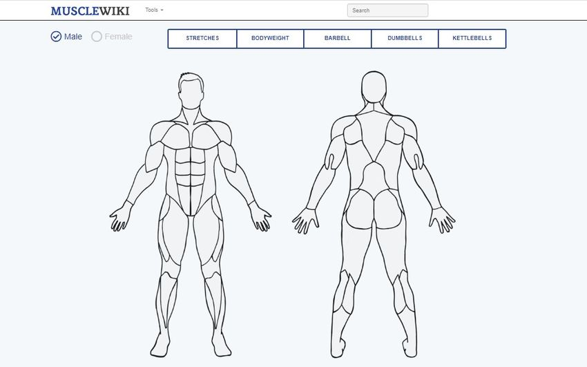 musclewiki - Musclewiki: Βρείτε άσκηση για κάθε μυ του σώματος