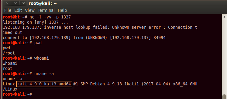 netcat3 - Guide to Reverse Shell between Two Linux Machines
